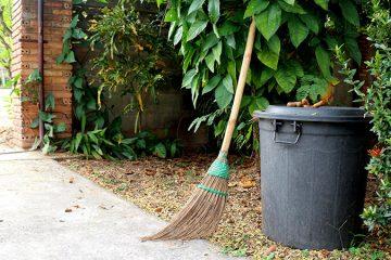 Spring & Fall Clean Ups