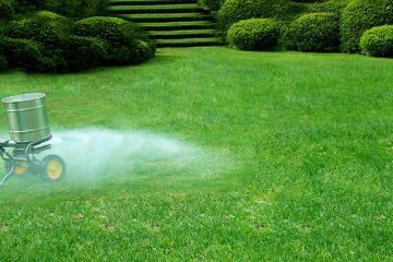 Fertilization & Weed Control